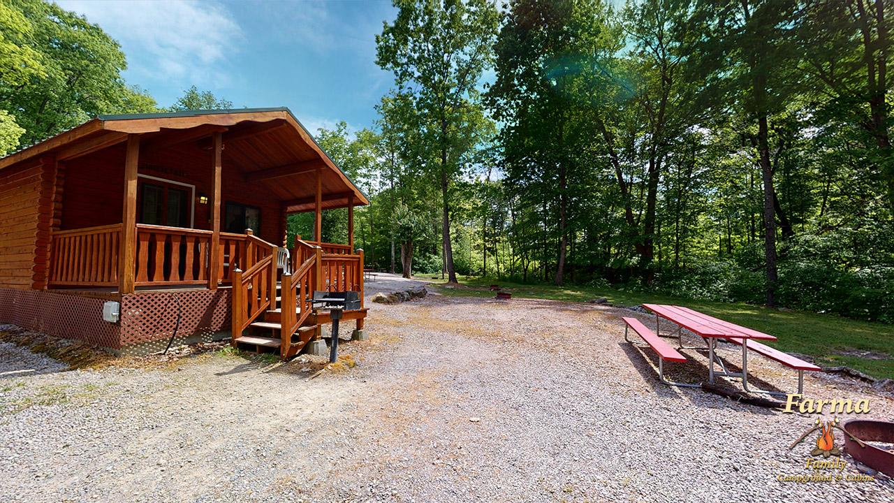 Standard Cabin (Sleeps 7) Image # 5